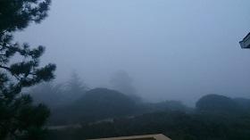 モントレーベイ霧